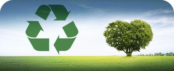 Gestion-de-la-sostenibilidad